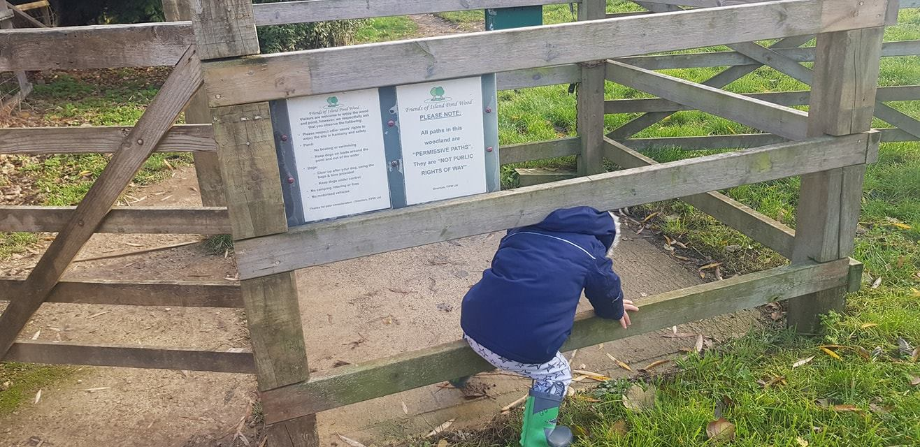 Elliot refusing to use the gate