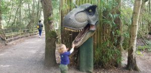 Wellington country park dinosaurs