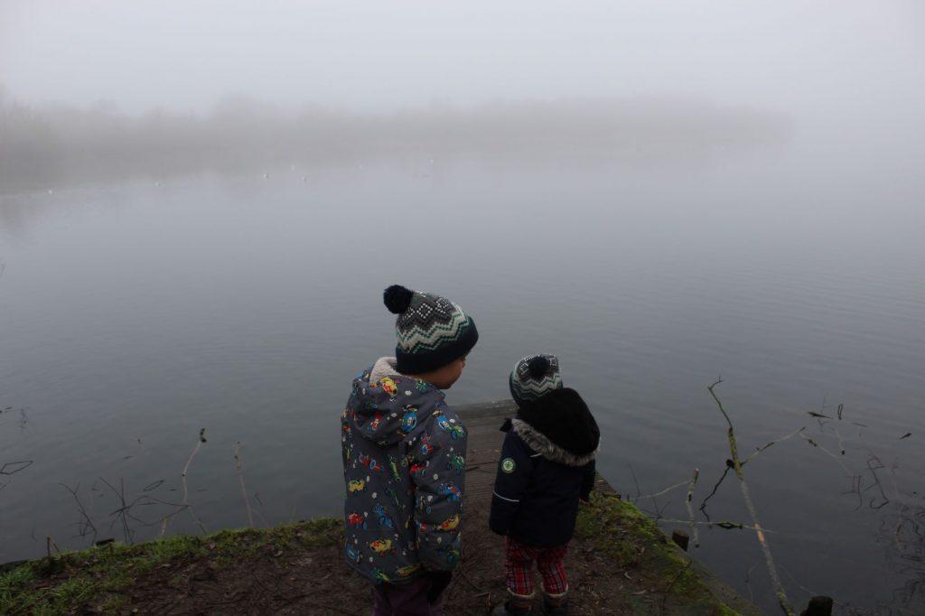 Foggy Dinton Pastures