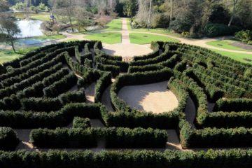 Cliveden house maze