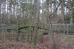 Salcy tree top walk closes