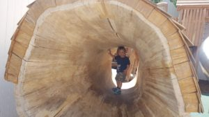 Natural Play Tunnel