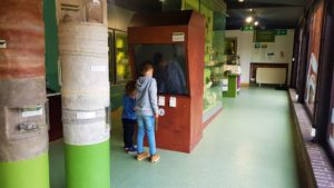 Stockwood discovery centre learning