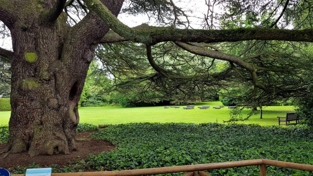 Sculpture gardens stockwood
