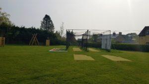 Cricket pitch Freeland