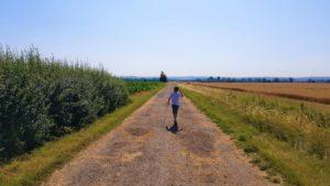Warbourough fields