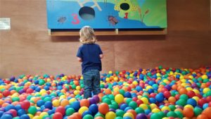 Roves Farm Ball Pit