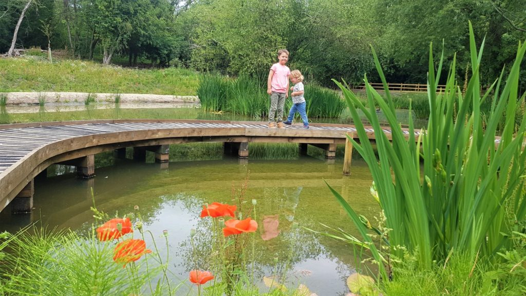 Pond Dipping Science Oxford