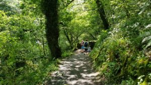 Walk down the watersmeet
