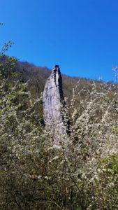 Ilam rock in spring