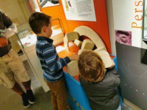 Aylesbury museum