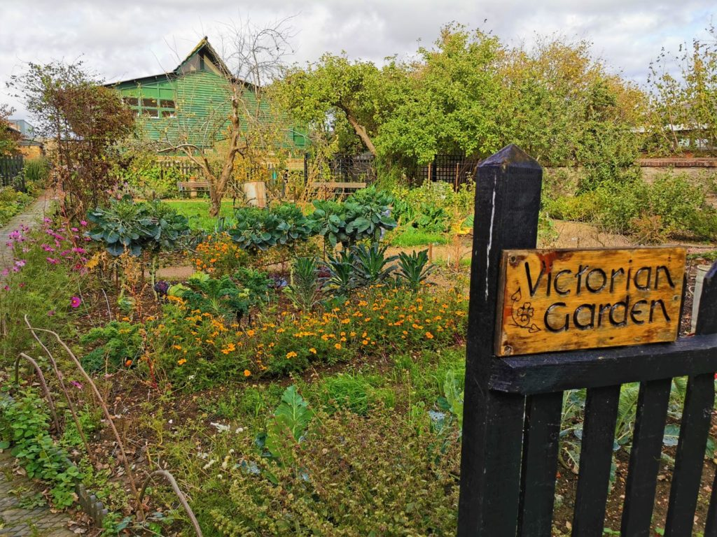 Victorian garden MK