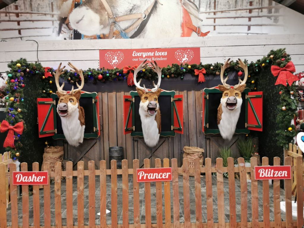 Singing raindeer at frosts garden centre