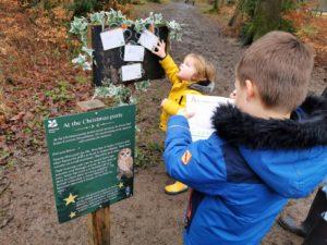 Nutcracker trail ashridge estate