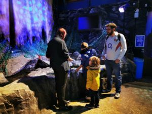 Learning at the sea life centre