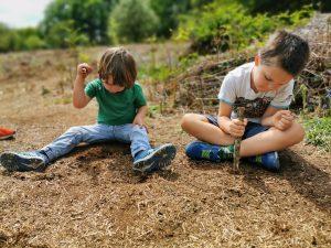 Woodland learning