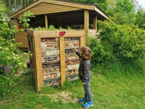 Forest Of Marston Vale Bug hotel