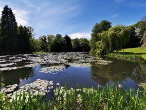 Smaller pond Wroxton