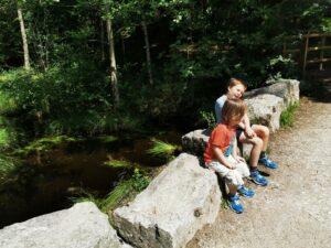 Fairoak trail cannock trail