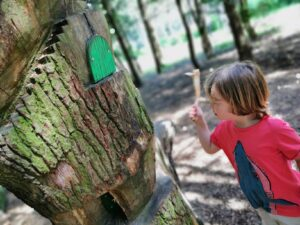 Fairy door in cannock chase