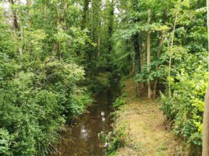 Little Billing river