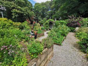 tea room gardens at stanton park