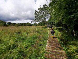 Parsonage moor nature reserve