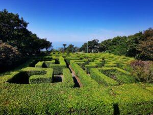 Blackgang chine maze