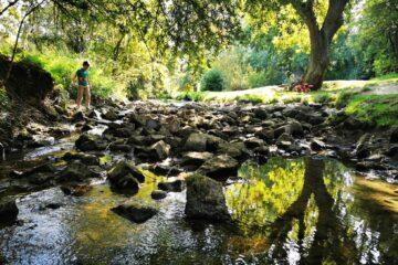 Loughton valley park