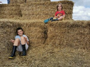 Hay Bale The Patch MK