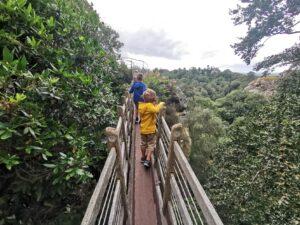 Child friendly walks in shropshire