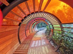 Kew Gardens for children