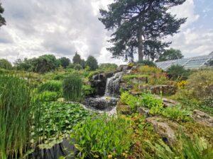 Rock garden Kew
