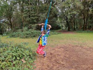Cumnor tree swing